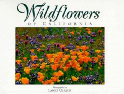 Wildflowers of California: Twenty Postcards (Companion Press Series), Lamb, Susan