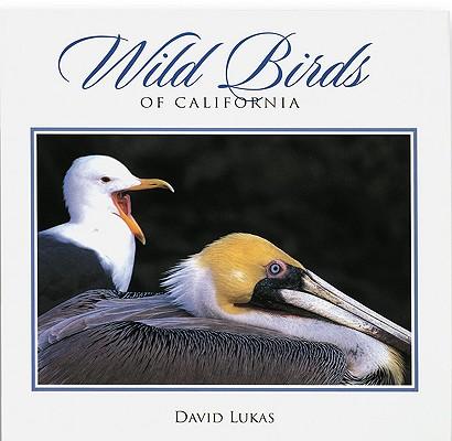 Wild Birds of California (Companion Press Series), Lukas, David