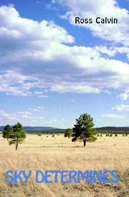 Image for Sky Determines: An Interpretation of the Southwest