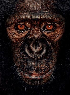 James & Other Apes, Mollison, James & Goodall, Jane