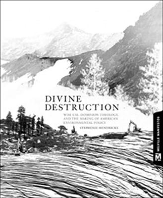 Divine Destruction: Dominion Theology and American Environmental Policy (Melville Manifestos), Hendricks, Stephenie