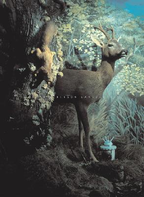Image for Conrad Atkinson: Landescapes