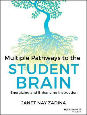 Image for Multiple Pathways to the Student Brain: Energizing and Enhancing Instruction