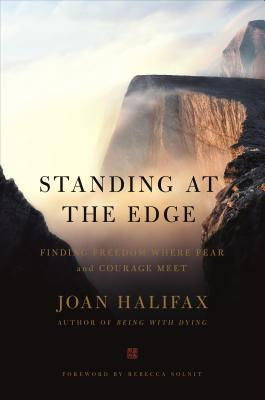 Image for Standing at the Edge: Finding Freedom Where Fear and Courage Meet