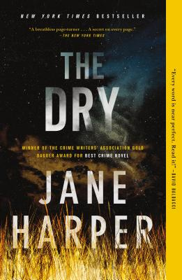 Image for The Dry: A Novel