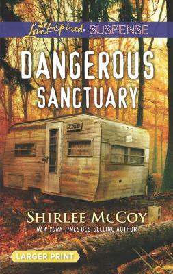 Image for Dangerous Sanctuary (FBI: Special Crimes Unit)