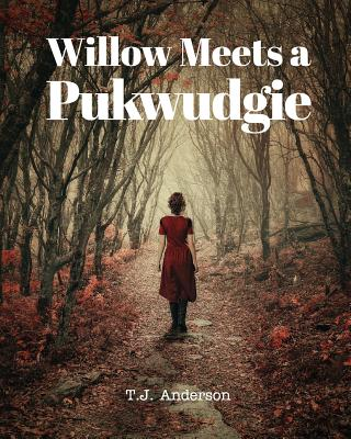 Image for Willow Meets a Pukwudgie