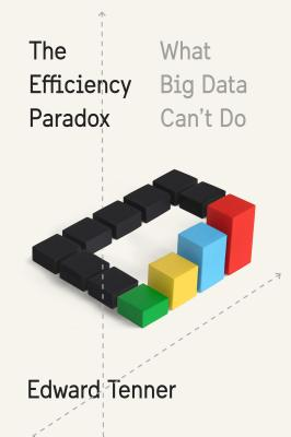 Image for The Efficiency Paradox: What Big Data Can't Do