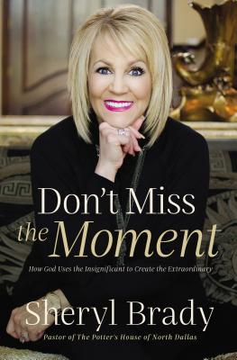 Image for Don't Miss the Moment: How God Uses the Insignificant to Create the Extraordinary