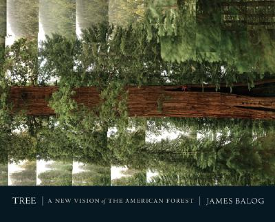 Image for Tree: A New Vision of the American Forest
