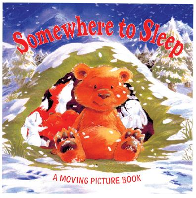 Image for Somewhere to Sleep
