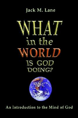 Image for What in the World Is God Doing: An Introduction to the Mind of God