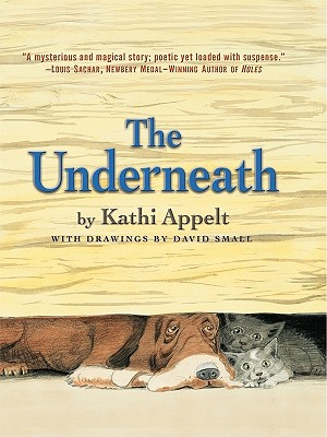 Image for The Underneath (Thorndike Literacy Bridge Young Adult)
