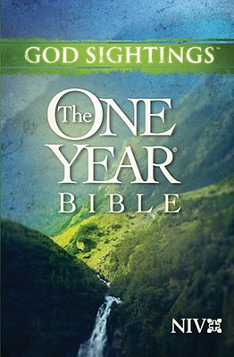 Image for God Sightings: The One Year Bible NIV