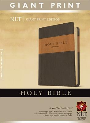 "Image for ""''Holy Bible, Giant Print NLT, TuTone''"""