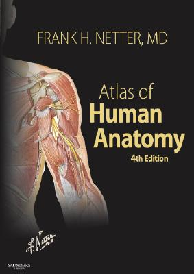 Image for Atlas of Human Anatomy, 4th Edition (Netter Basic Science)