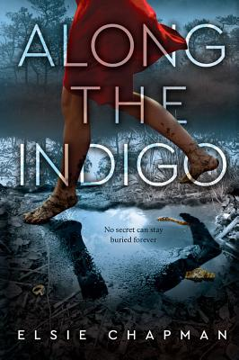 Image for ALONG THE INDIGO