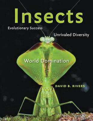 Insects: Evolutionary Success, Unrivaled Diversity, and World Domination, Rivers, David B.