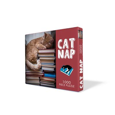 Image for Cat Nap Puzzle