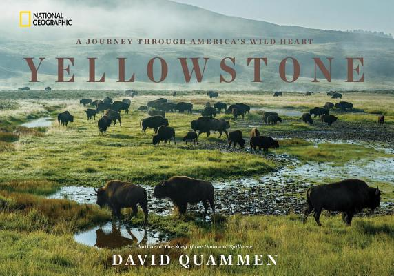 Image for Yellowstone: A Journey Through America's Wild Heart