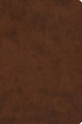 Image for ESV Value Compact Bible (TruTone, Brown)