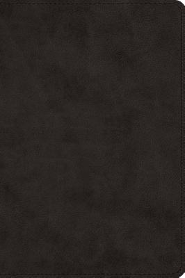 "Image for ""ESV Large Print Bible (TruTone, Black)"""