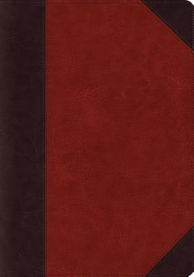 Image for Holy Bible: English Standard Version, Brown, Trutone Systematic Theology Study Bible