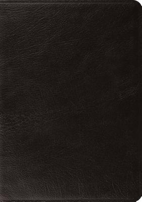 Image for ESV, Black, Systematic Theology Study Bible