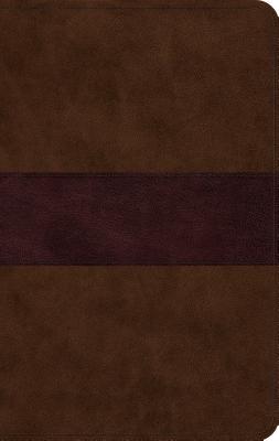 Image for ESV Large Print Thinline Bible (TruTone, Chocolate/Plum, Trail Design)