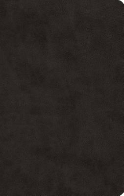 "Image for ""ESV Large Print Value Thinline Bible (TruTone, Black), soft imitation leather"""