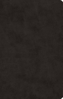 "Image for ""''ESV Large Print Value Thinline Bible (TruTone, Black), soft imitation leather''"""