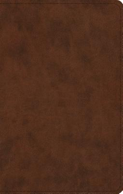 Image for ESV UltraThin Bible (TruTone, Brown)