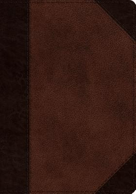 Image for ESV Journaling Psalter (TruTone, Brown/Walnut, Portfolio Design)