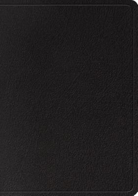 Image for ESV Large Print Wide Margin Bible (Black)