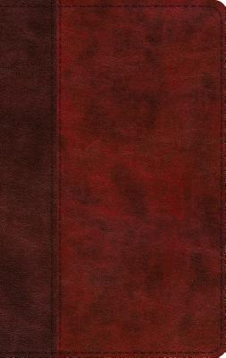 Image for ESV Large Print Thinline Bible (TruTone, Burgundy/Red, Timeless Design)