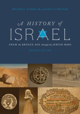 Image for A History of Israel