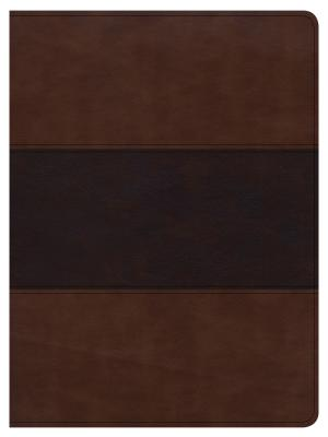 Image for CSB Apologetics Study Bible, Mahogany LeatherTouch