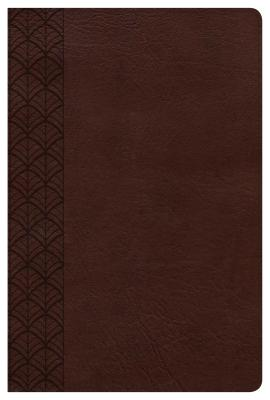 Image for The CSB Study Bible For Women, Chocolate LeatherTouch, Indexed
