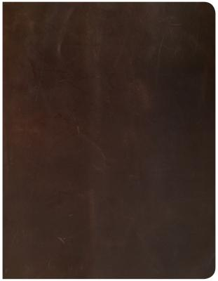 Image for CSB Notetaking Bible, Brown Genuine Leather Over Board