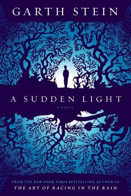 Image for A Sudden Light A Novel