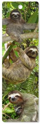 Image for Sloths 3-D Bookmark (Lenticular Bookmark)