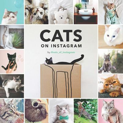 Image for Cats on Instagram