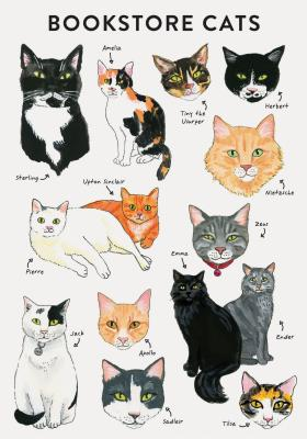 Image for Bibliophile Flexi Journal: Bookstore Cats
