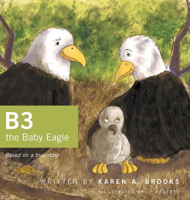 B3 the Baby Eagle: Based on a True Story, Brooks, Karen A.