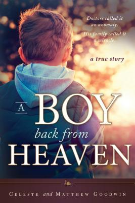 A Boy Back From Heaven, Matthew Goodwin, Celeste Goodwin