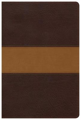 Image for CSB Disciple's Study Bible, Brown/Tan LeatherTouch