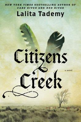 Image for Citizens Creek: A Novel