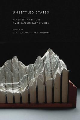 Unsettled States: Nineteenth-Century American Literary Studies (America and the Long 19th Century)