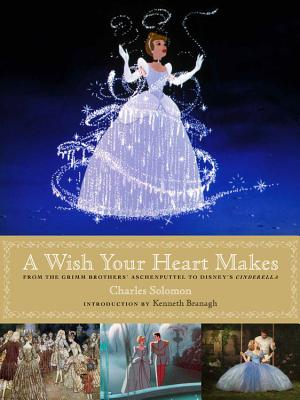 Image for A Wish Your Heart Makes: From the Grimm Brothers' Aschenputtel to Disney's Cinderella (Disney Editions Deluxe (Film))