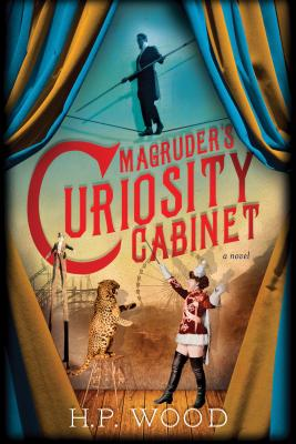 Image for Magruder's Curiosity Cabinet: A Novel